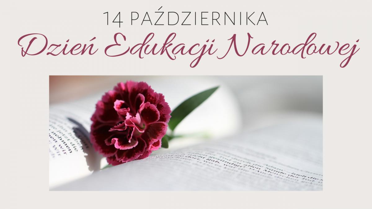 Dzień Edukacji Narodowej » Platforma Edukacyjna Powiatu Wodzisławskiego