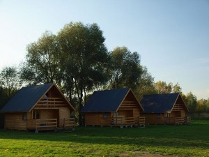 widok ogólny na domki drewniane stojące w rzędzie po drzewami i w otoczeniu roślinności