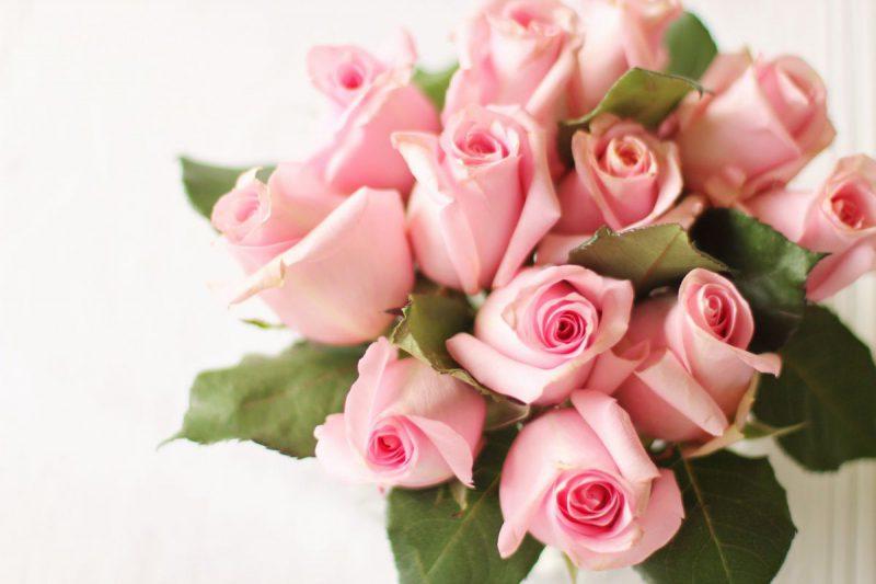 róże bukiet kwiaty