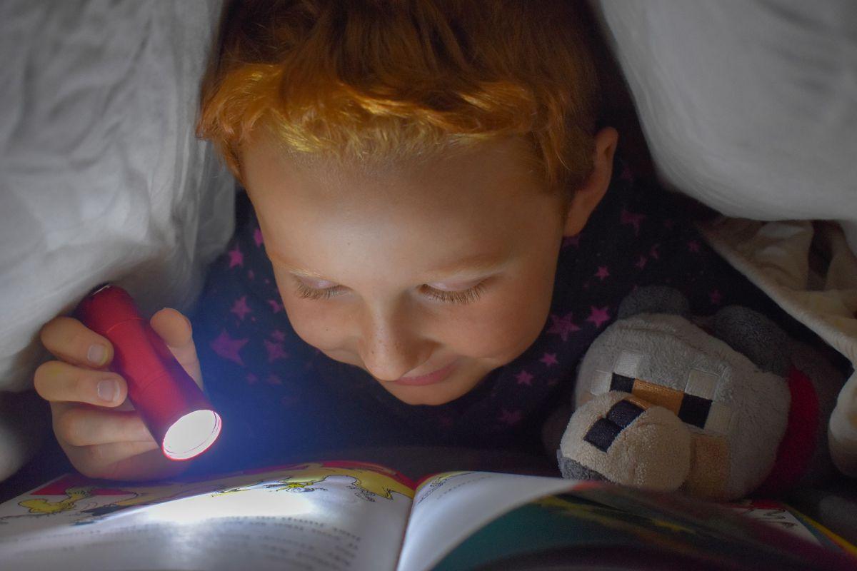 dziecko czytające pod kołdrą z latarką w dłoni
