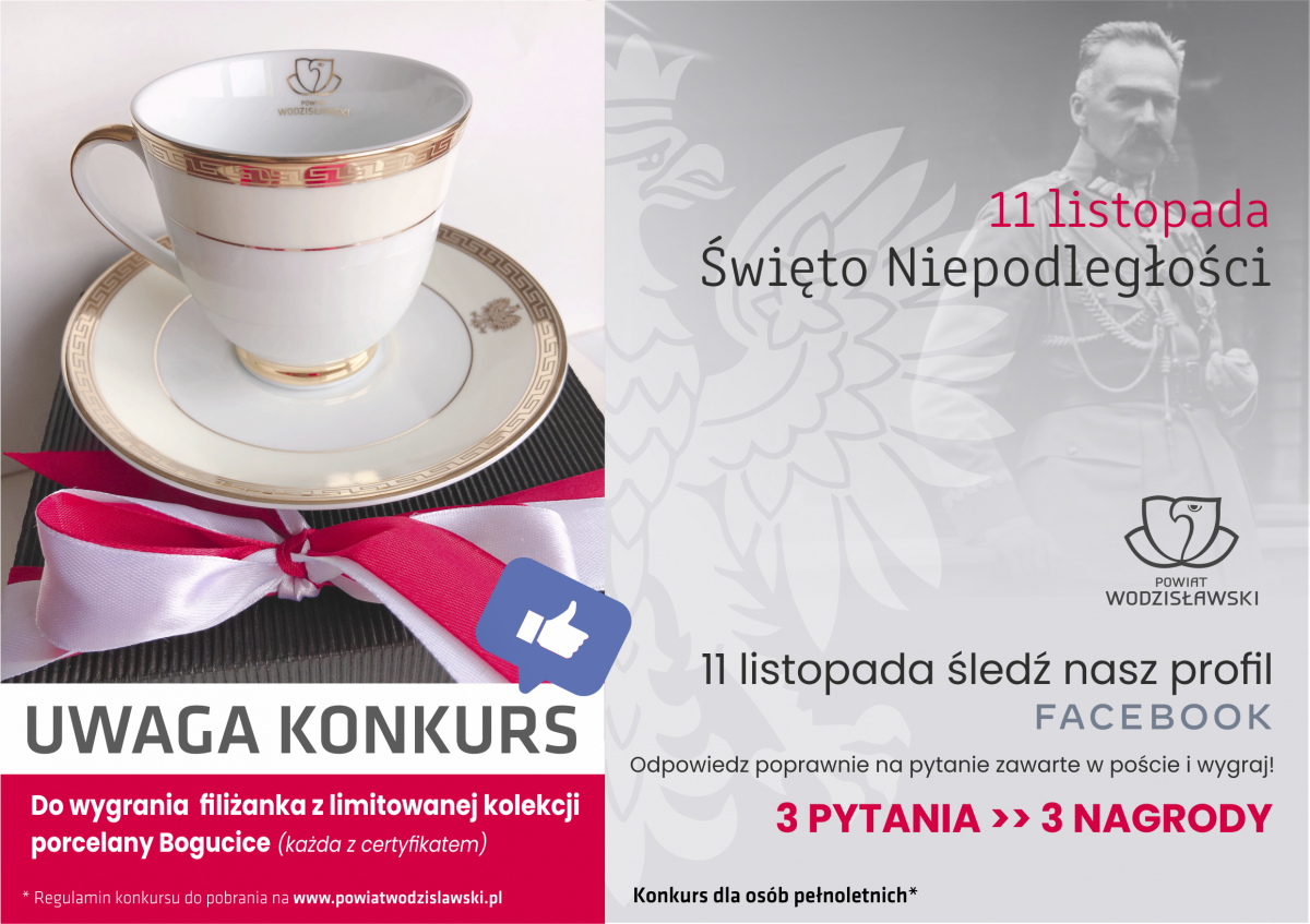 plakat infografika dotycząca konkursu z okazji Narodowego Święta Niepodległości 2020