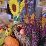 Festyn Barwy Jesieni w Oazie Aktywności w Wodzisławiu Śl. Fotorelacja z imprezy 12.10.2021 r. Na zdjęciu zbliżenie stoiska promocyjnego